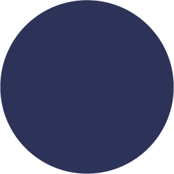 navy blue/dressage